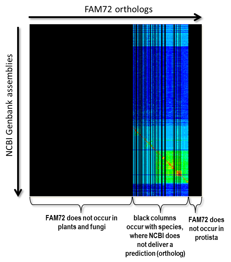 squared-matrix